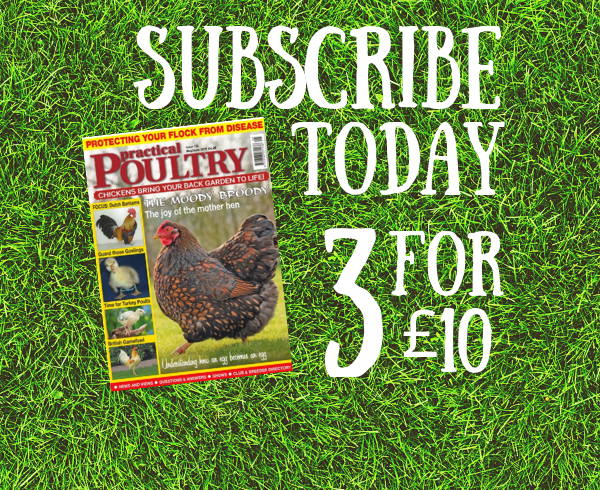 Subscribe - Practical Poultry
