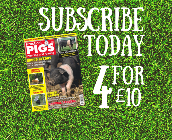 Subscribe - Practical Pigs