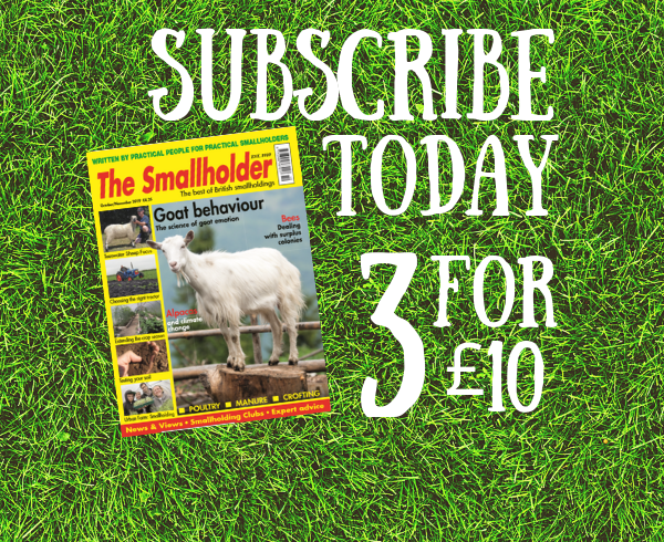 Subscribe - Smallholding